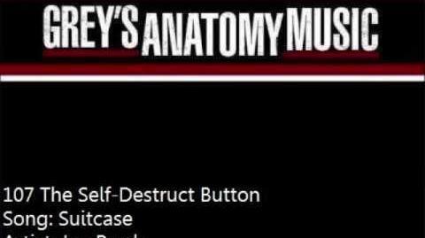 """Suitcase"" - Joe Purdy"