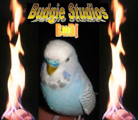 File:BudgieStudioslogo.jpg