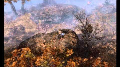 Grim Dawn Pre Alpha - Old Grove Environment