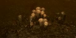 Swarming Hatchery Icon