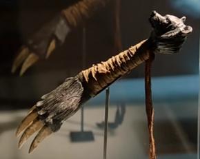 102-Bear Claw