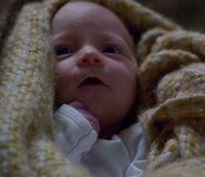 316 Adalind's Daughter