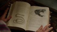 609-Vle di Bouyi in Rosalee's Book