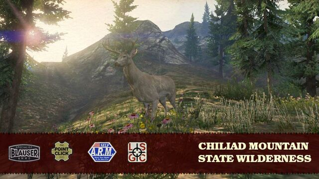 File:State Wilderness .jpg