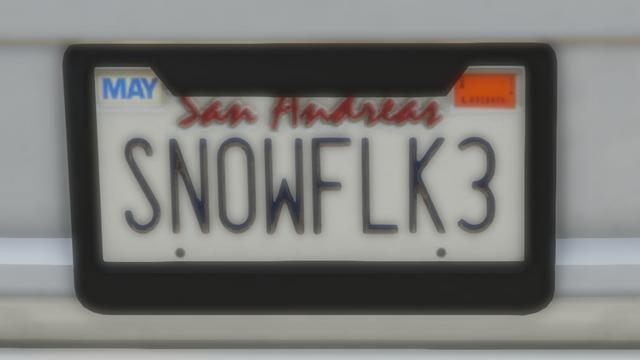 File:Custom Plate GTAO SN0WFLK3.png