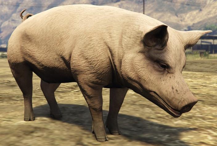 File:Pig-GTA5.png
