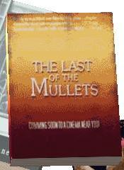MulletsBook