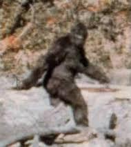 File:Bigfoot?!?!?!.jpg