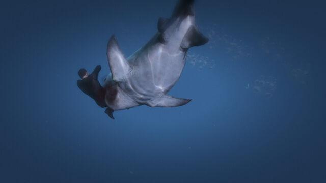 File:Shark beast eat.jpg