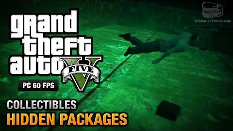GTA 5 PC - Hidden Packages Briefcases Location Guide