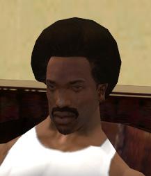 File:Reece'sHair&FacialStudio-GTASA-Afro&'stash.jpg