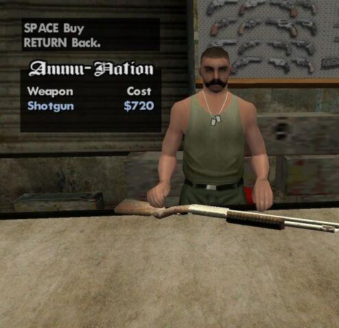 File:Ammo Shotgun.jpg