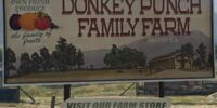 Donkey Punch Family Farm