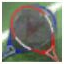 File:LifeInvader GTAV Dena Profile tiny.png