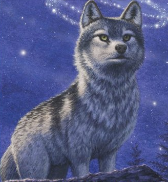 File:Frost Wolf Faolan.png