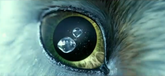 File:Eye of the Owl.png