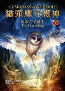 Chinese hatchling