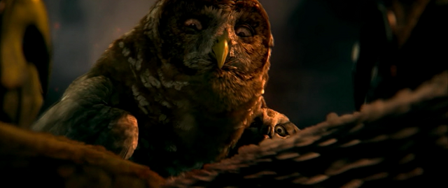 File:Grimble's Mate and Owlet.png