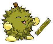Durian chia