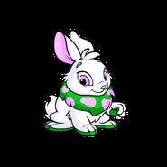 Green bunny