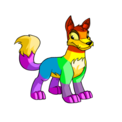 Lupe rainbow