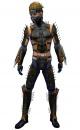Assassin Exotic armor m