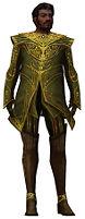 Norgu Mysterious armor.jpg
