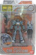 MSiA rgm79n p01 Asian
