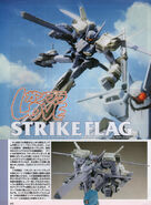 STRIKE FLAG