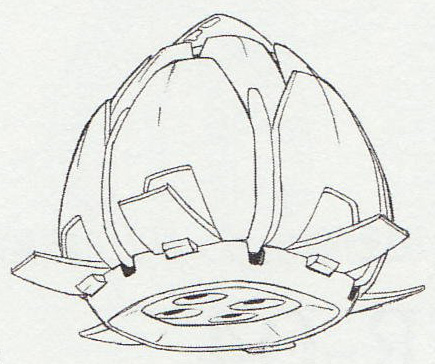 File:Bud Carrier-Back.jpg