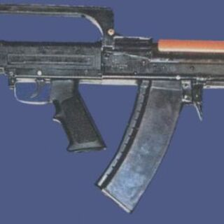 A bullpup prototype of the ASM-DT with a magazine used above water.