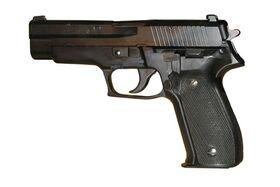 SIG P226