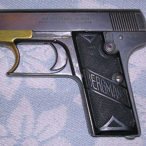 A Lignose Einhand 3A with Bergmann grips.