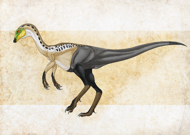 File:Struthiomimus.png