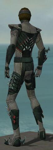 File:Assassin Seitung Armor M gray back.jpg