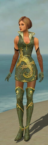 File:Mesmer Elite Canthan Armor F gray front.jpg