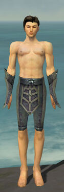 Elementalist Krytan Armor M gray arms legs front
