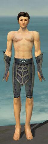 File:Elementalist Krytan Armor M gray arms legs front.jpg