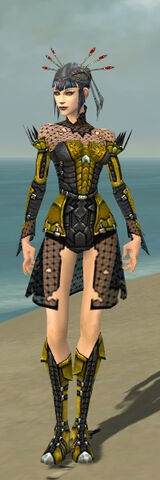 File:Necromancer Cabal Armor F dyed front.jpg