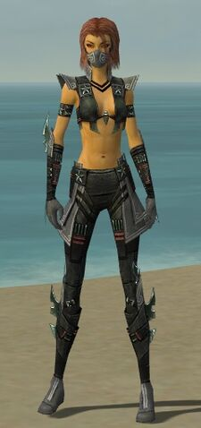 File:Assassin Luxon Armor F gray front.jpg