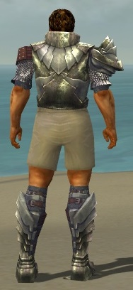 File:Warrior Templar Armor M gray chest feet back.jpg