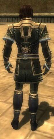 File:Mesmer Elite Sunspear Armor M gray back.jpg