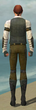 Mesmer Ascalon Armor M gray back