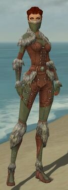 Ranger Fur-Lined Armor F gray front