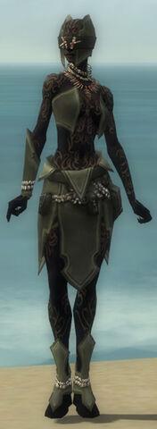 File:Ritualist Kurzick Armor F gray front.jpg