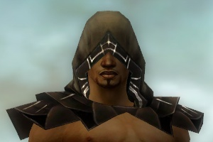 File:Dervish Primeval Armor M dyed head front.jpg