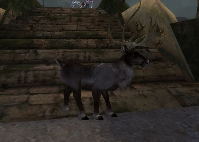 File:Reindeer Form effect 1.jpg