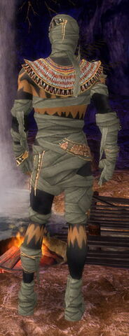 File:Ritualist Ancient Armor M gray back.jpg
