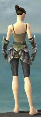 Warrior Templar Armor F gray arms legs back