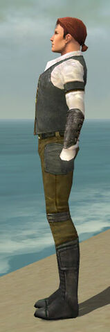 File:Mesmer Ascalon Armor M gray side.jpg